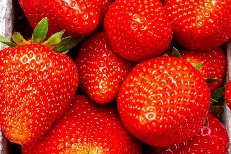ogm-obstland-baden-beerenobst-erdbeeren-mood
